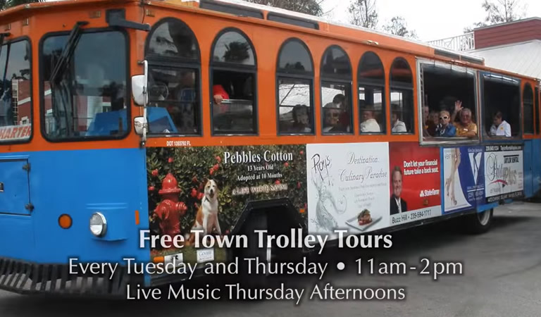 Trolley Tours and Live Music