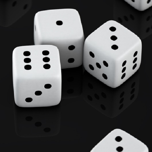 Scattered Dice in Del Webb Naples Ave Maria Florida