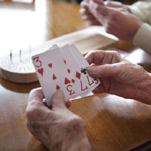 Hand holding cards for Cribbage Del Webb Naples Ave Maria Florida