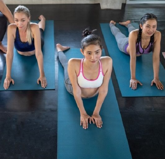 Yoga Practice Exercise Class Concept, Attractive young sport girls are doing yoga together. Group training. Healthy lifestyle concept.