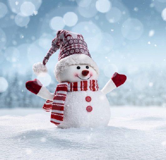 Snowman in snow, Ave Maria, Florida